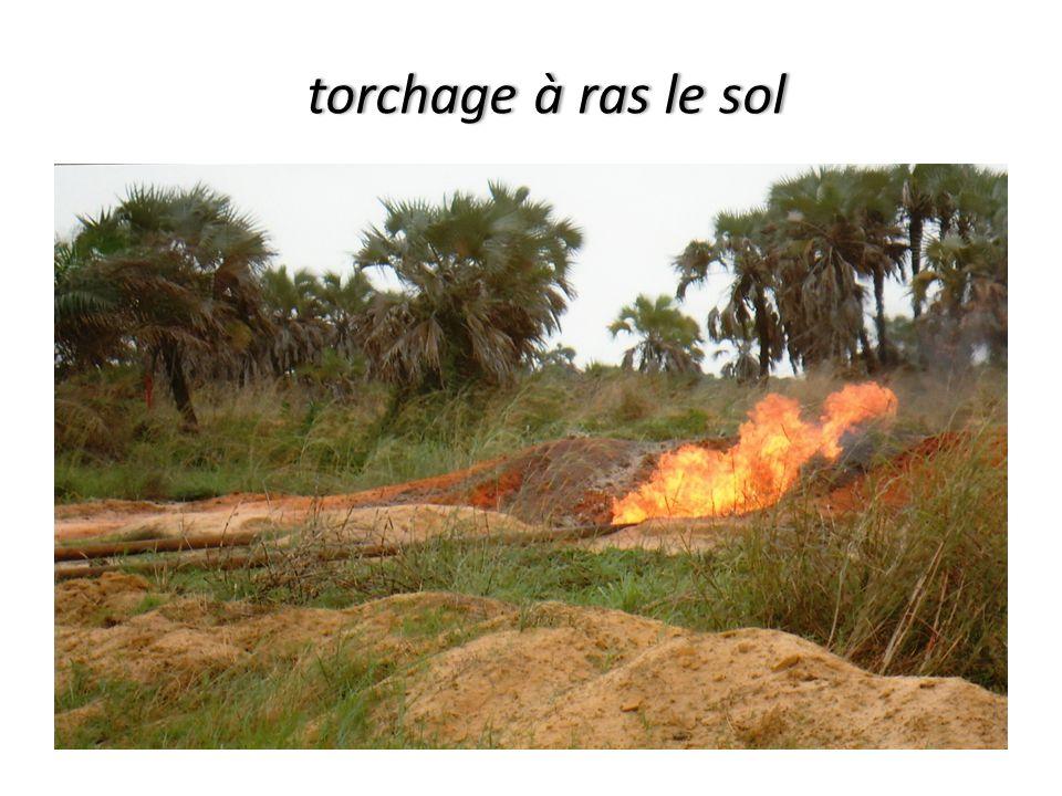 torchage à ras le sol torchage à ras le sol
