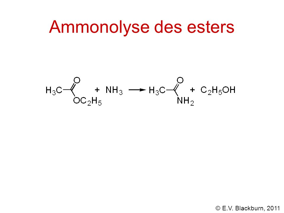 © E.V. Blackburn, 2011 Ammonolyse des esters