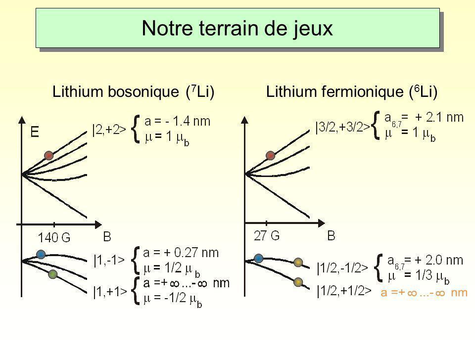 Notre terrain de jeux Lithium bosonique ( 7 Li)Lithium fermionique ( 6 Li)