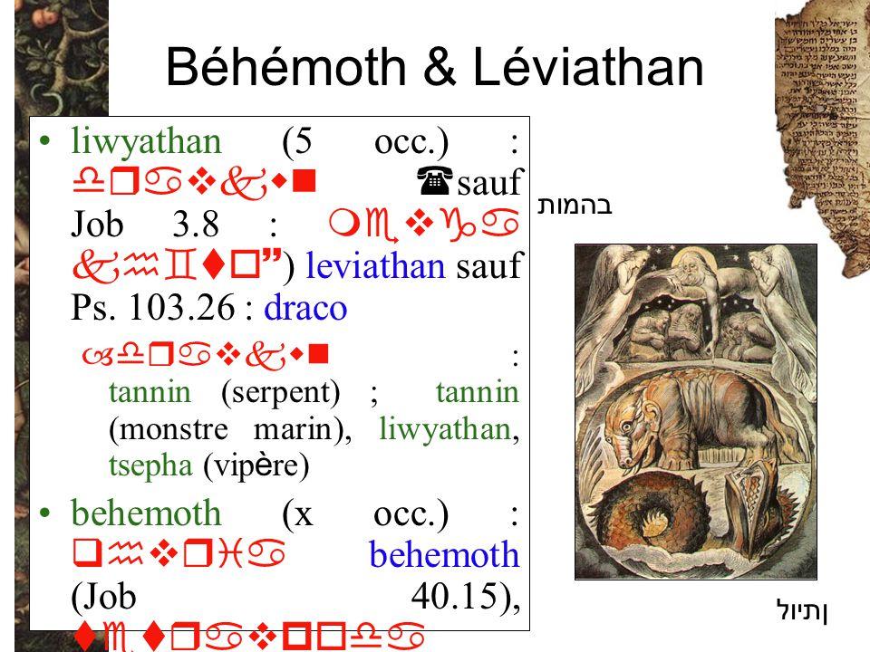 Béhémoth & Léviathan liwyathan (5 occ.) : dravkwn ( sauf Job 3.8 : mevga kh`to~ ) leviathan sauf Ps. 103.26 : draco –dravkwn : tannin (serpent) ; tann