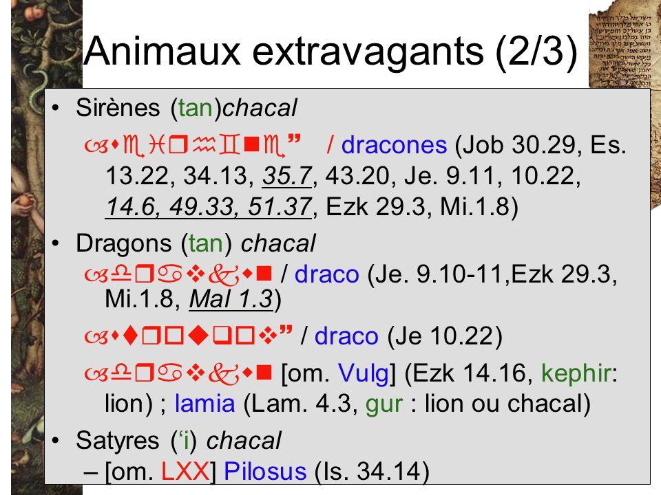 Animaux extravagants (2/3) Sirènes (tan)chacal –  / dracones (Job 30.29, Es. 13.22, 34.13, 35.7, 43.20, Je. 9.11, 10.22, 14.6, 49.33, 51.37,