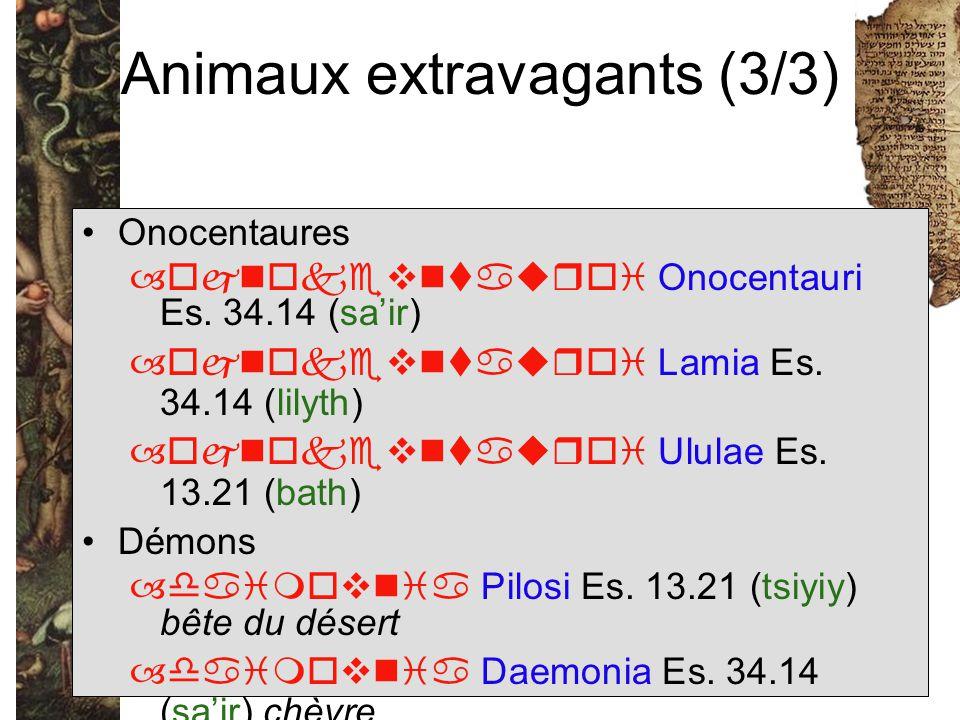 Animaux extravagants (3/3) Onocentaures –  Onocentauri Es. 34.14 (sa'ir) –  Lamia Es. 34.14 (lilyth) –  Ululae Es.
