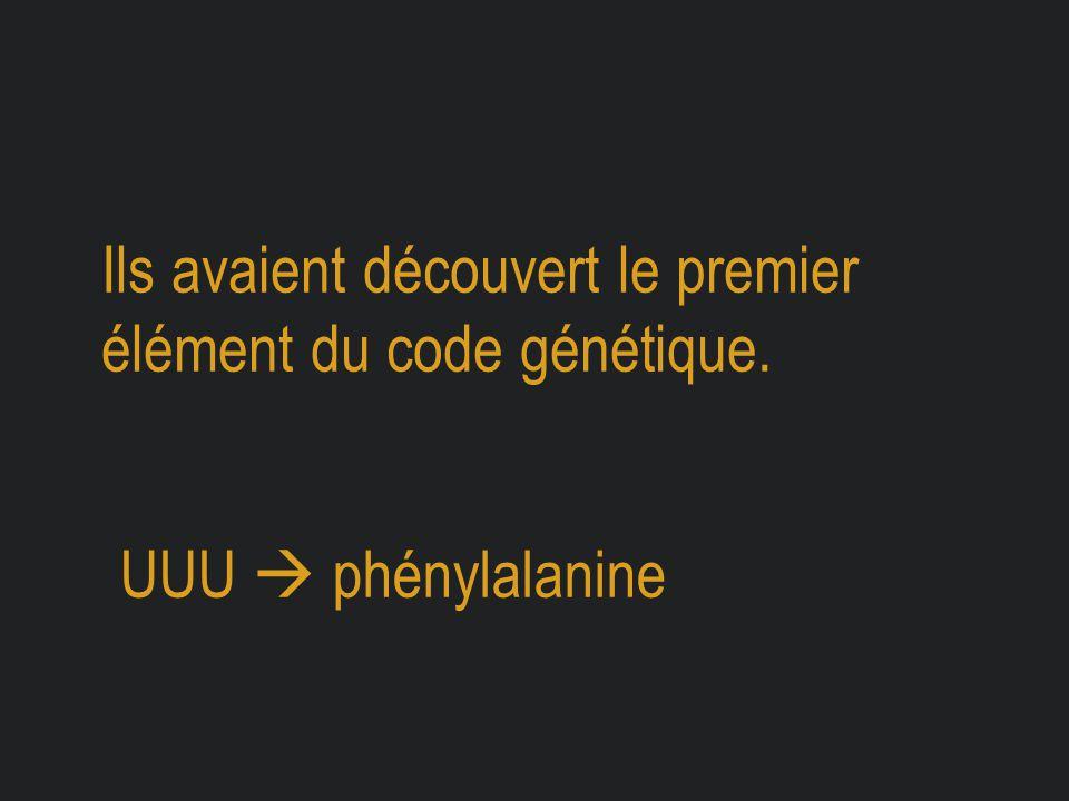 Ils avaient découvert le premier élément du code génétique. UUU  phénylalanine