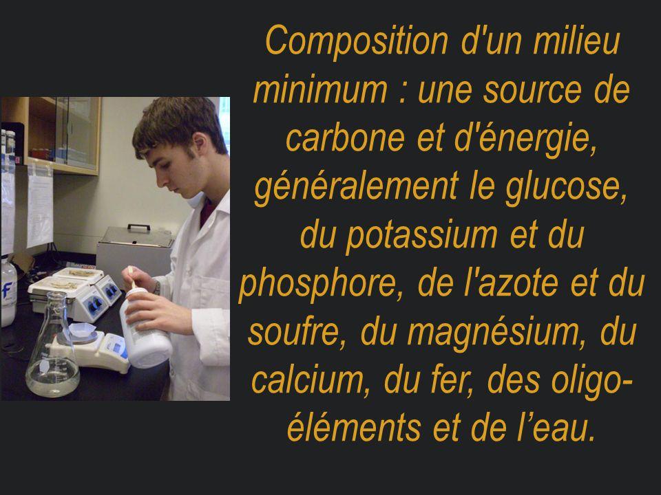 Composition d'un milieu minimum : une source de carbone et d'énergie, généralement le glucose, du potassium et du phosphore, de l'azote et du soufre,
