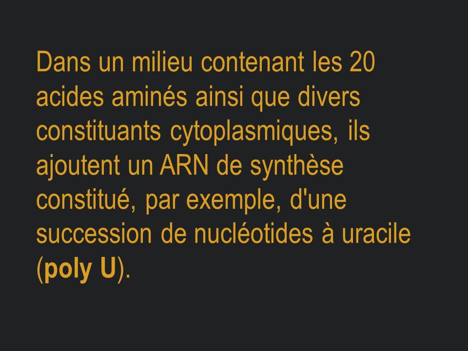Dans un milieu contenant les 20 acides aminés ainsi que divers constituants cytoplasmiques, ils ajoutent un ARN de synthèse constitué, par exemple, d'
