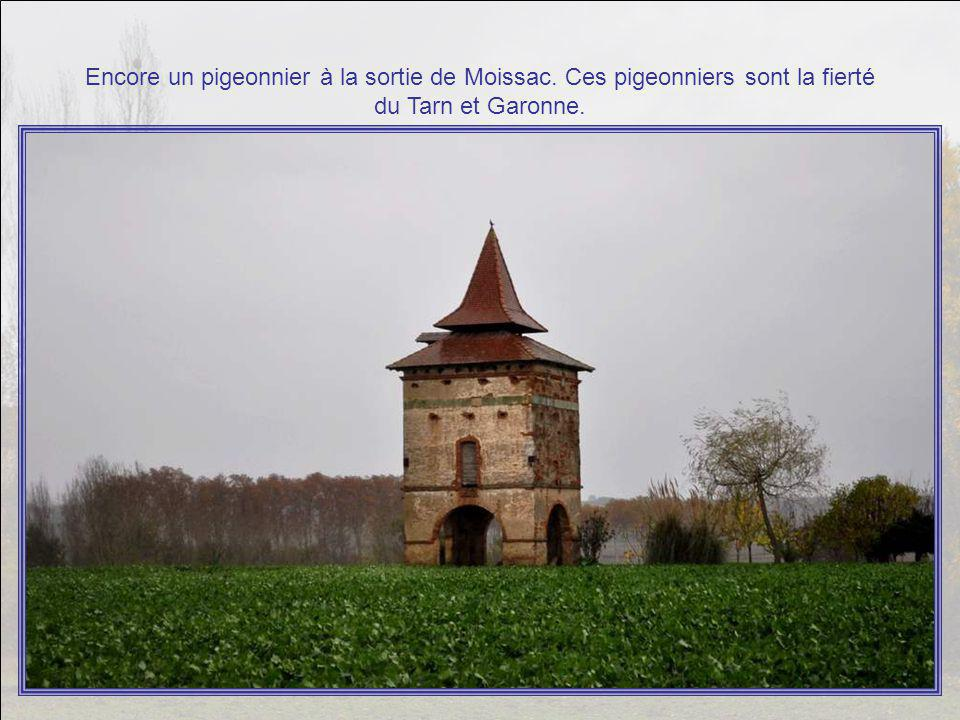 Il semble que, en entrant à Moissac, ce soit les ruines de Saint Martin de Belcassé qui nous ont saluées (et pour être cassées, ça, elles étaient cass