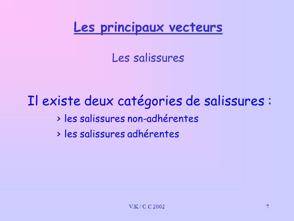V.K / C.C 20027 Les principaux vecteurs Les salissures Il existe deux catégories de salissures : >les salissures non-adhérentes >les salissures adhérentes