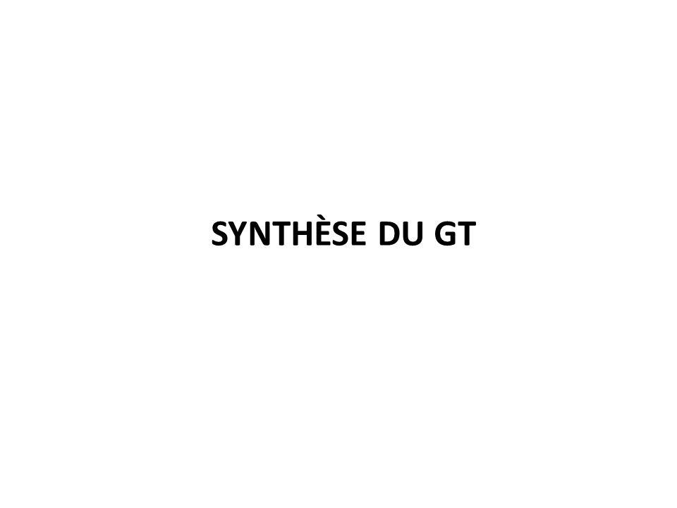 SYNTHÈSE DU GT