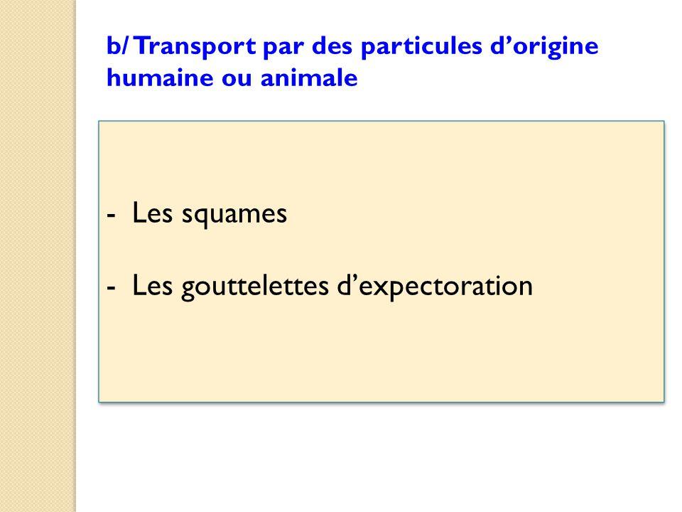-Les squames -Les gouttelettes d'expectoration -Les squames -Les gouttelettes d'expectoration b/ Transport par des particules d'origine humaine ou animale
