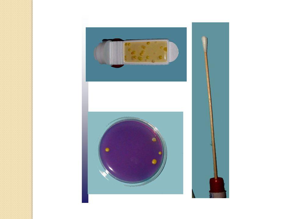 a/ La technique d'écouvillonnag e Principe Principe : - détacher à l'aide de l'écouvillon tous les microorganismes présents sur une surface donnée et les recueillir sur l'écouvillon - les remettre en suspension dans un volume connu de diluant et les mettre ensuite en culture en milieu gélosé.
