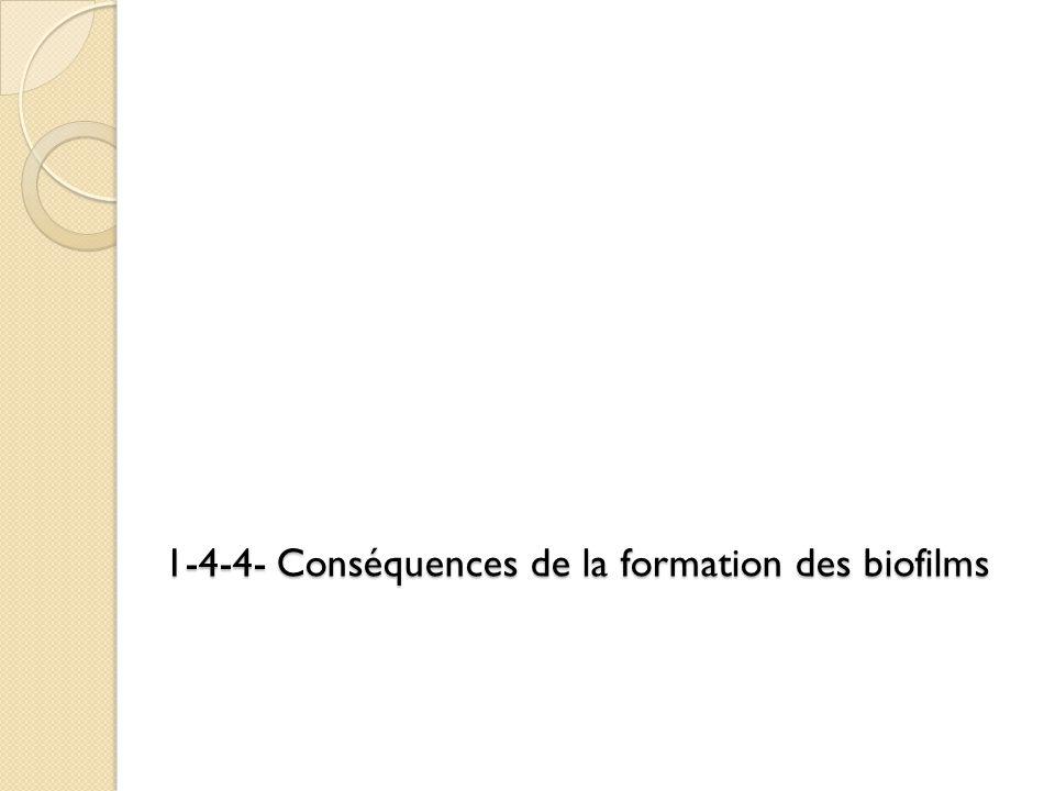 1-4-4- Conséquences de la formation des biofilms