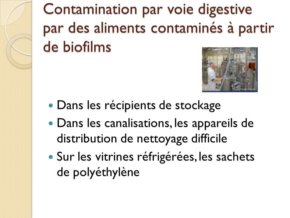 Contamination par voie digestive par des aliments contaminés à partir de biofilms Dans les récipients de stockage Dans les canalisations, les appareils de distribution de nettoyage difficile Sur les vitrines réfrigérées, les sachets de polyéthylène