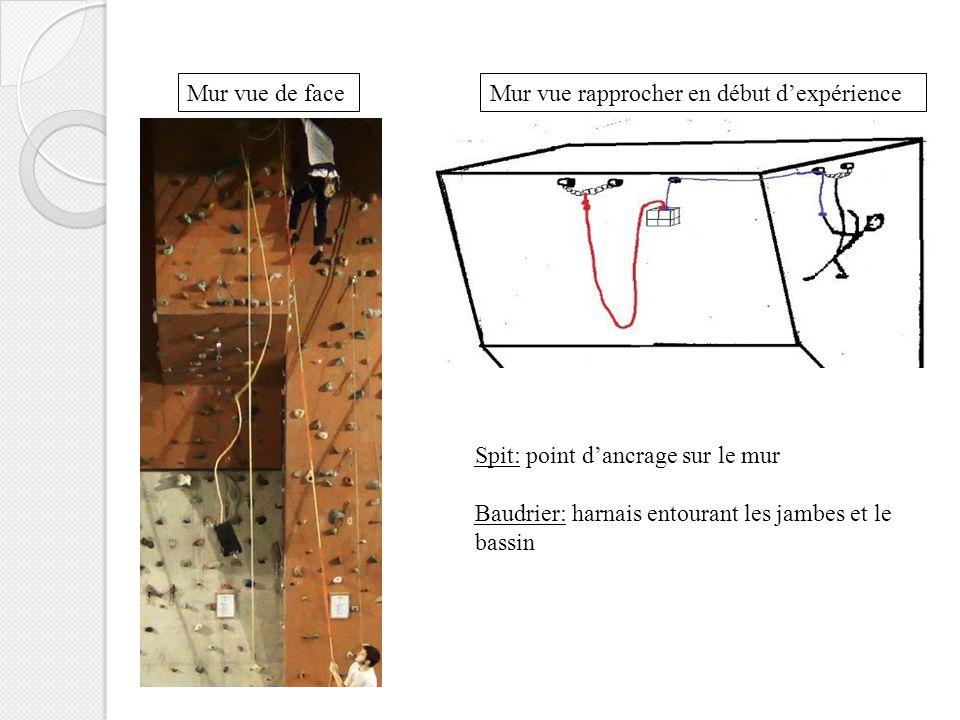 Mur vue de faceMur vue rapprocher en début d'expérience Spit: point d'ancrage sur le mur Baudrier: harnais entourant les jambes et le bassin