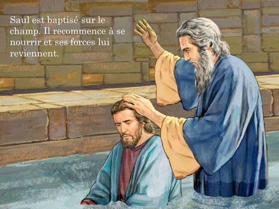 Saul est baptisé sur le champ. Il recommence à se nourrir et ses forces lui reviennent.