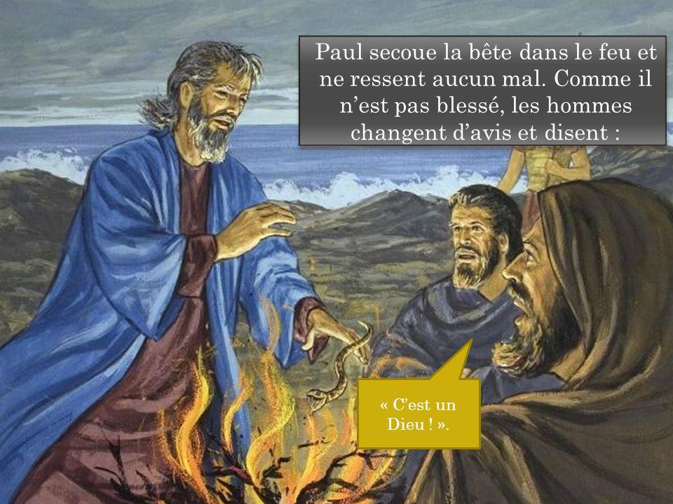 Paul secoue la bête dans le feu et ne ressent aucun mal.