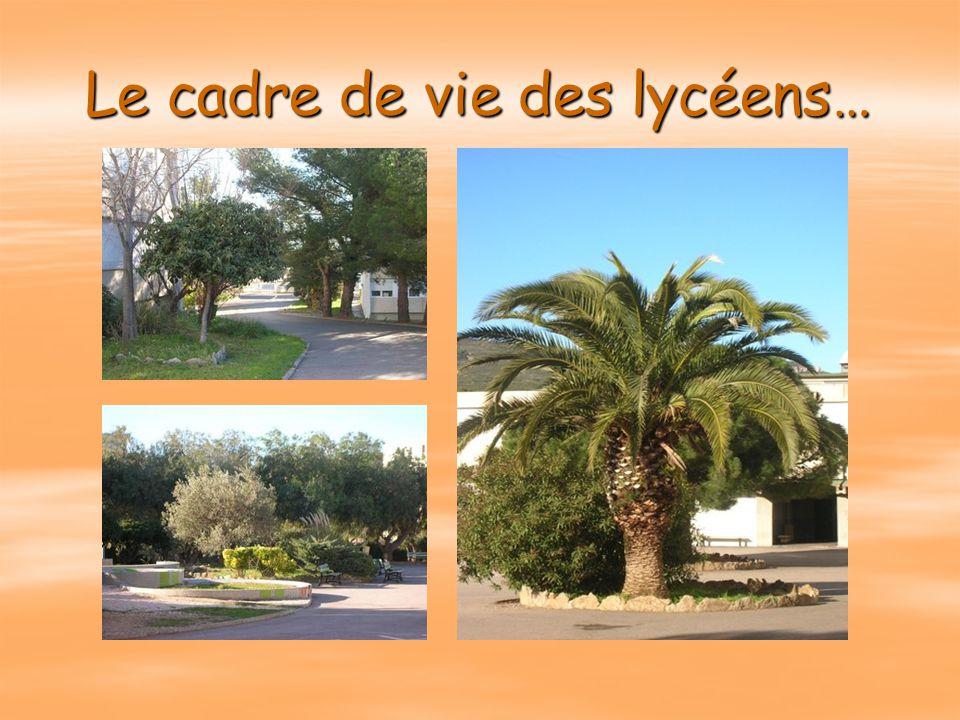 Lycée Lumière La Ciotat Maison fondée en 1970… 44 années d'expérience. 04.42.08.38.38