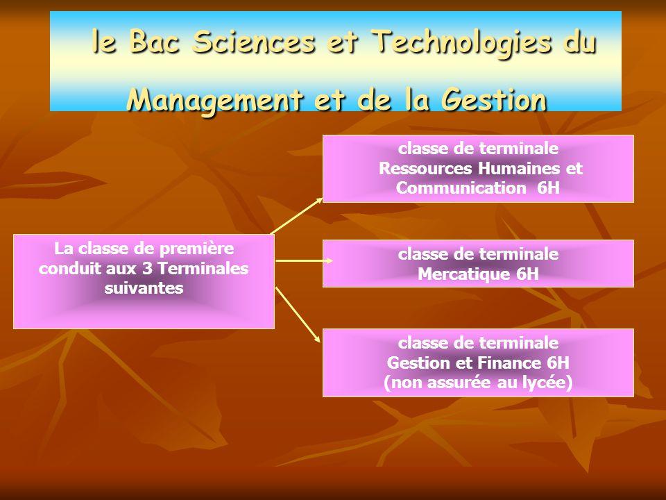 Le Bac Sciences et Technologies du Management et de la Gestion
