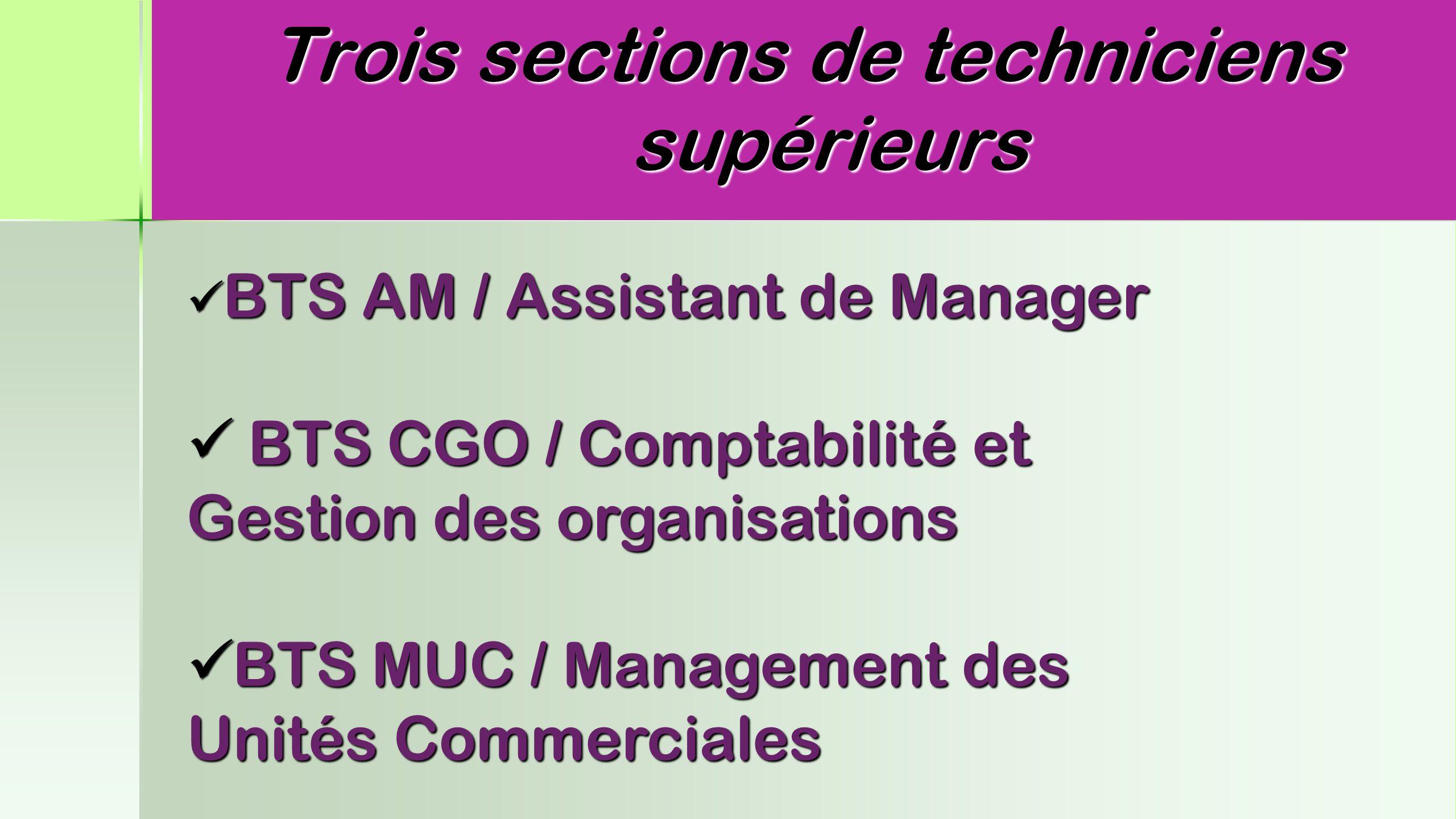 Trois sections de techniciens supérieurs BTS AM / Assistant de Manager BTS AM / Assistant de Manager BTS CGO / Comptabilité et Gestion des organisatio
