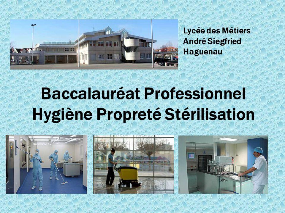 Baccalauréat Professionnel Hygiène Propreté Stérilisation Lycée des Métiers André Siegfried Haguenau