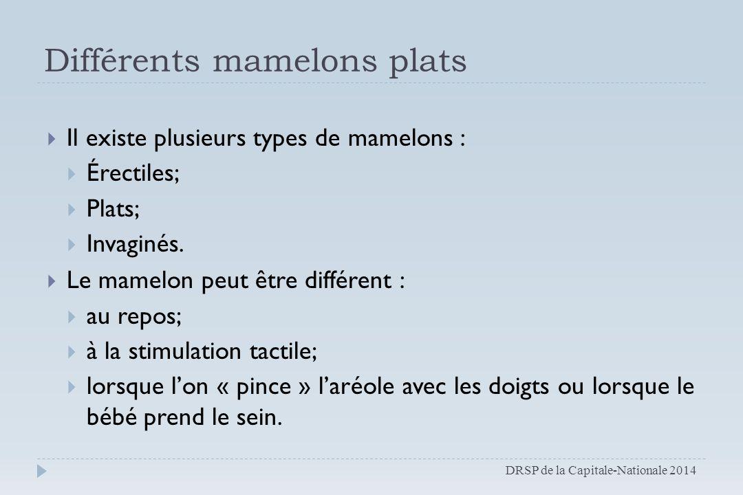 Différents mamelons plats  Il existe plusieurs types de mamelons :  Érectiles;  Plats;  Invaginés.  Le mamelon peut être différent :  au repos;