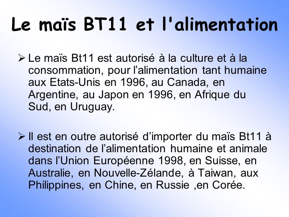 Le maïs BT11 et l'alimentation  Le maïs Bt11 est autorisé à la culture et à la consommation, pour l'alimentation tant humaine aux Etats-Unis en 1996,