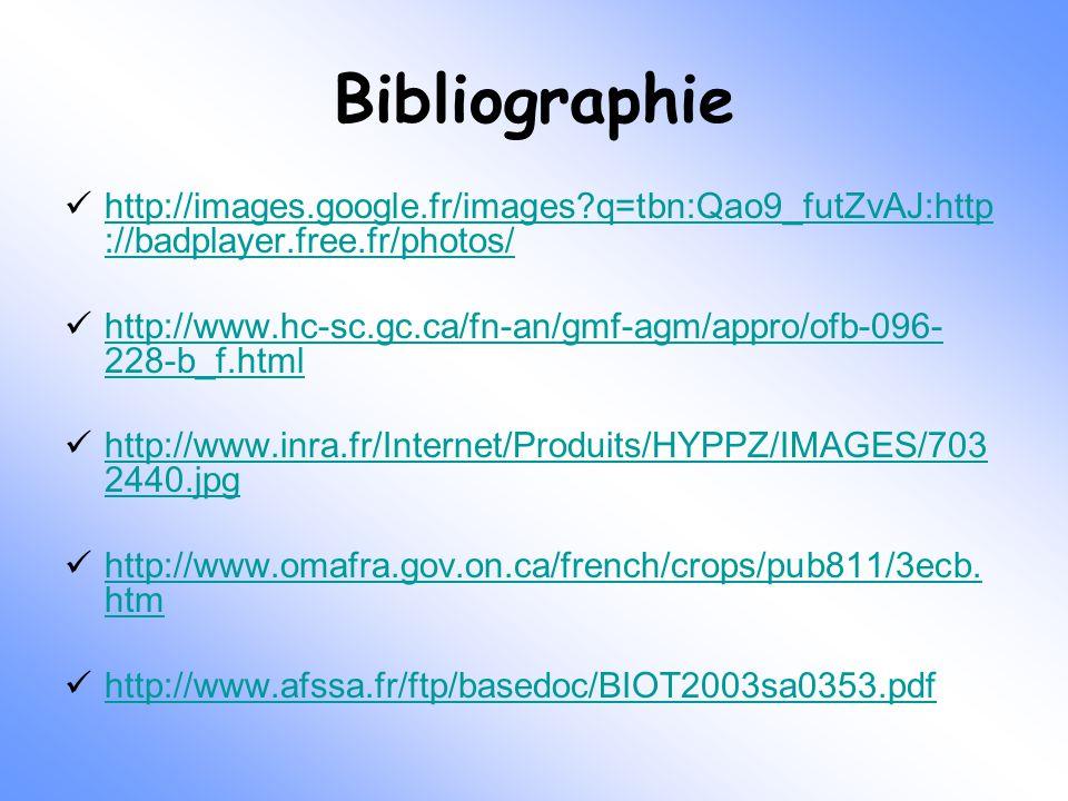 Bibliographie http://images.google.fr/images?q=tbn:Qao9_futZvAJ:http ://badplayer.free.fr/photos/ http://images.google.fr/images?q=tbn:Qao9_futZvAJ:ht