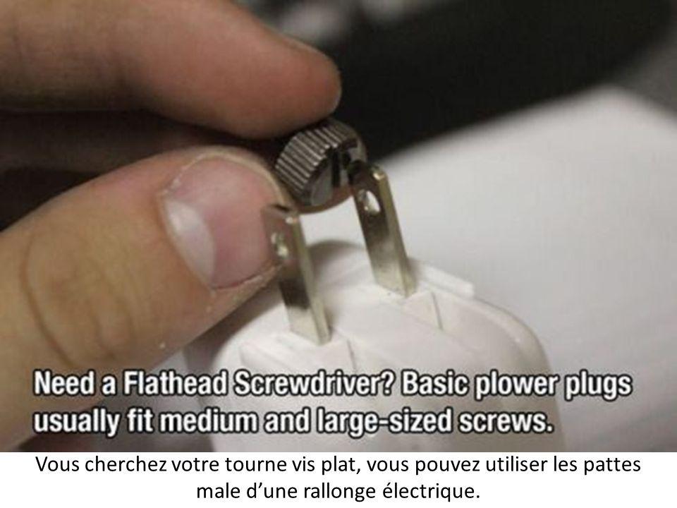 Vous cherchez votre tourne vis plat, vous pouvez utiliser les pattes male d'une rallonge électrique.