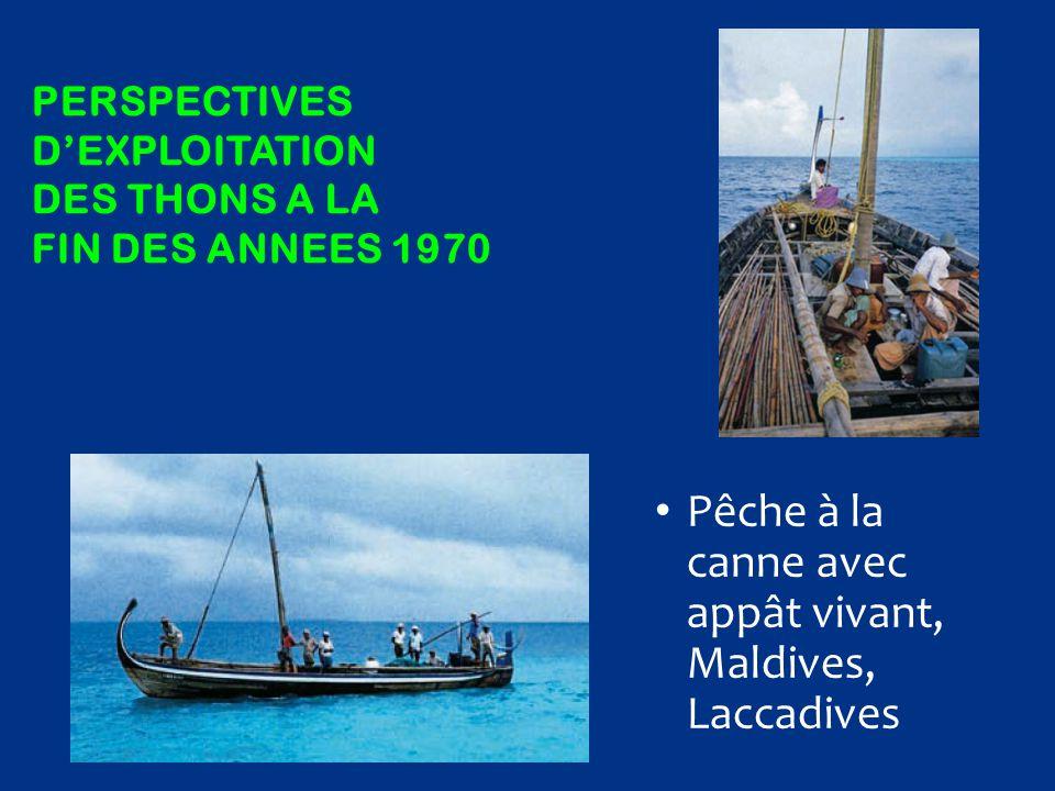 PERSPECTIVES D'EXPLOITATION DES THONS A LA FIN DES ANNEES 1970 Pêche à la canne avec appât vivant, Maldives, Laccadives