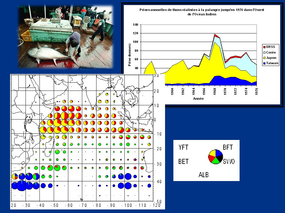 Puis le succès avec la pêche palangrière semi-industrielle  Premiers essais en 1994-95 avec Etelis  Espadon : 50-80% des captures  2003 : problème de taux en cadmium élevés sur l'espadon  Embargo européen en 2004, levé en février 2005  Grande importance socio- économique (100% emplois locaux)  Haute valeur marchande, export sur UE