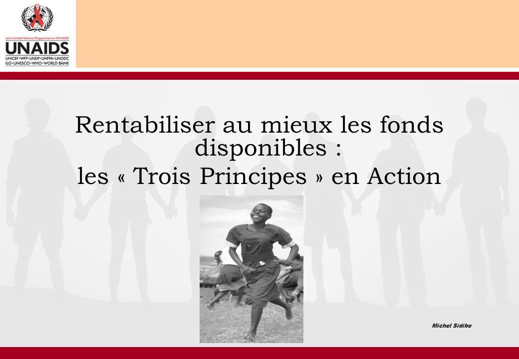 Rentabiliser au mieux les fonds disponibles : les « Trois Principes » en Action Michel Sidibe