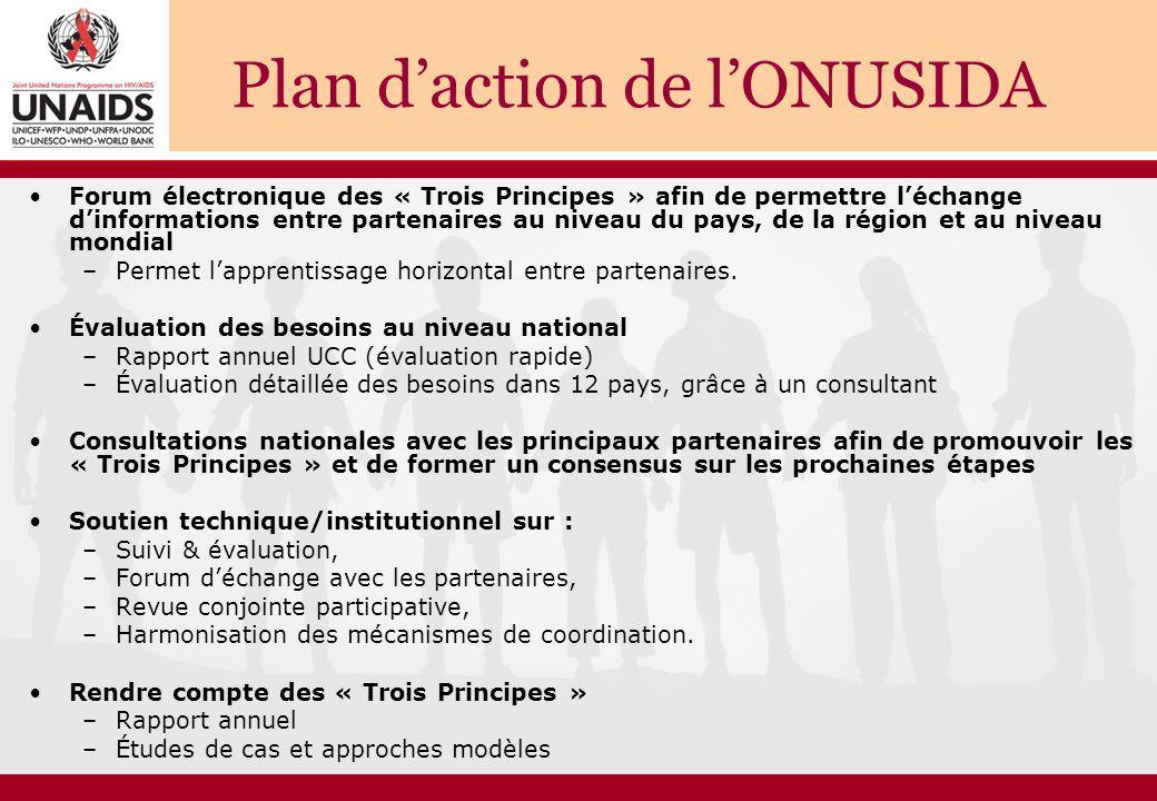 Plan d'action de l'ONUSIDA Forum électronique des « Trois Principes » afin de permettre l'échange d'informations entre partenaires au niveau du pays, de la région et au niveau mondial –Permet l'apprentissage horizontal entre partenaires.