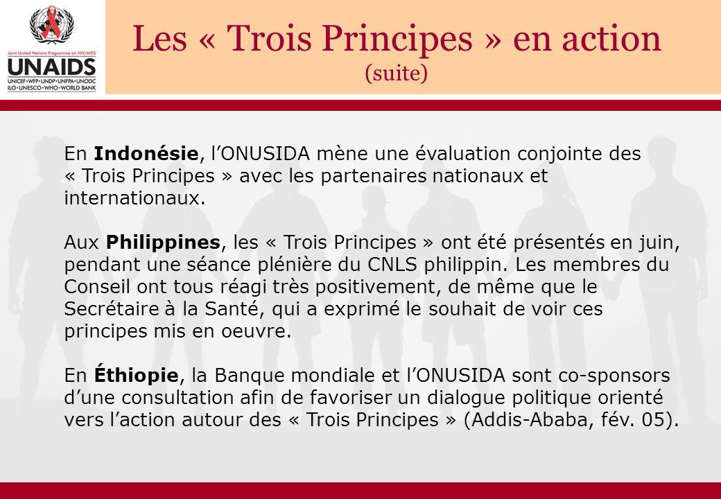 Les « Trois Principes » en action (suite) En Indonésie, l'ONUSIDA mène une évaluation conjointe des « Trois Principes » avec les partenaires nationaux et internationaux.