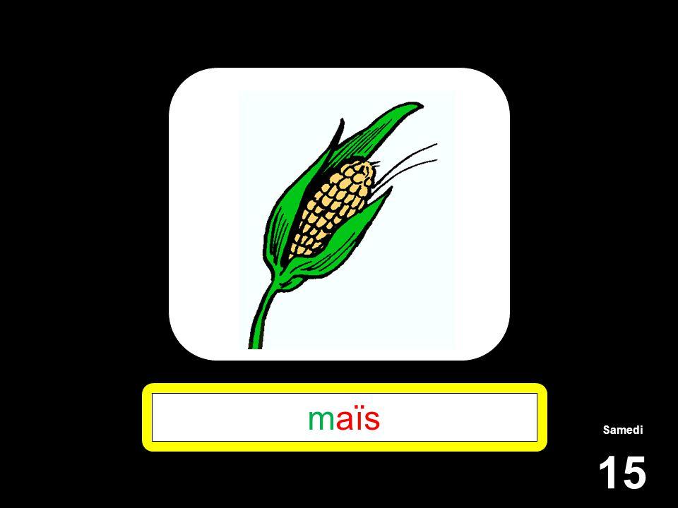 Samedi 15 maïs