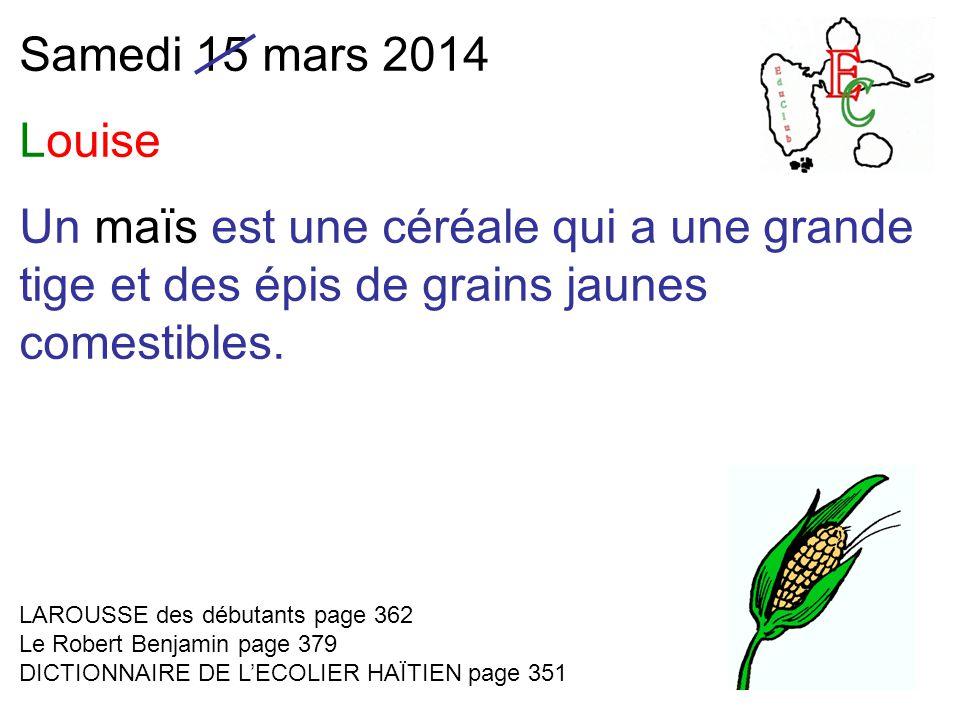 Samedi 15 mars 2014 Louise Un maïs est une céréale qui a une grande tige et des épis de grains jaunes comestibles.