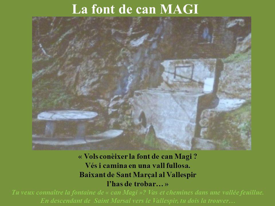 La font de can MAGI « Vols conèixer la font de can Magi ? Vés i camina en una vall fullosa. Baixant de Sant Marçal al Vallespir l'has de trobar… » Tu