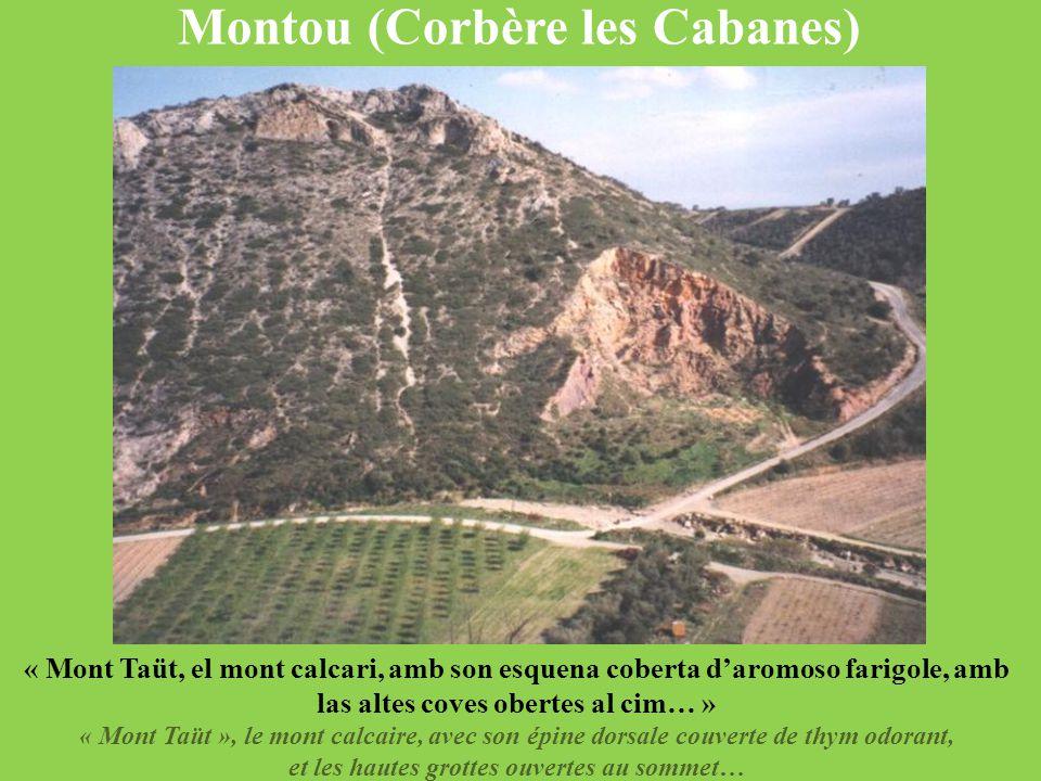 Montou (Corbère les Cabanes) « Mont Taüt, el mont calcari, amb son esquena coberta d'aromoso farigole, amb las altes coves obertes al cim… » « Mont Ta