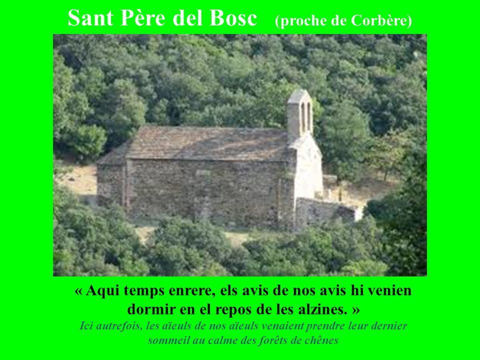Sant Père del Bosc (proche de Corbère) « Aqui temps enrere, els avis de nos avis hi venien dormir en el repos de les alzines. » Ici autrefois, les aïe