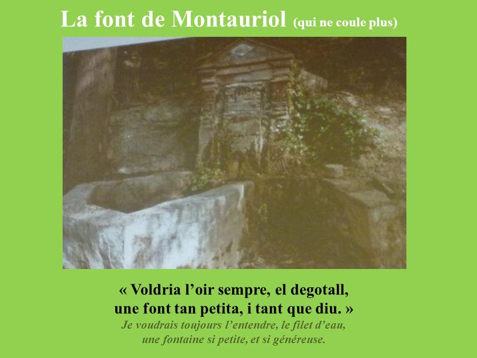 La font de Montauriol (qui ne coule plus) « Voldria l'oir sempre, el degotall, une font tan petita, i tant que diu. » Je voudrais toujours l'entendre,