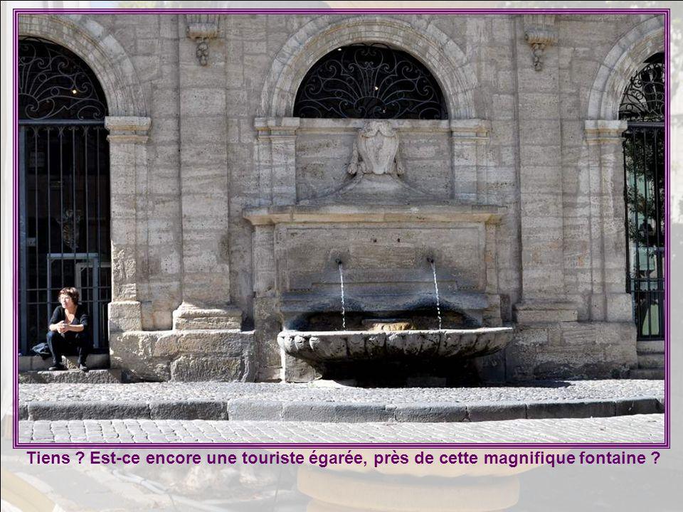 L'orgue Lépine-Cavaillé-Coll de la collégiale Saint Jean de Pézenas fait partie des