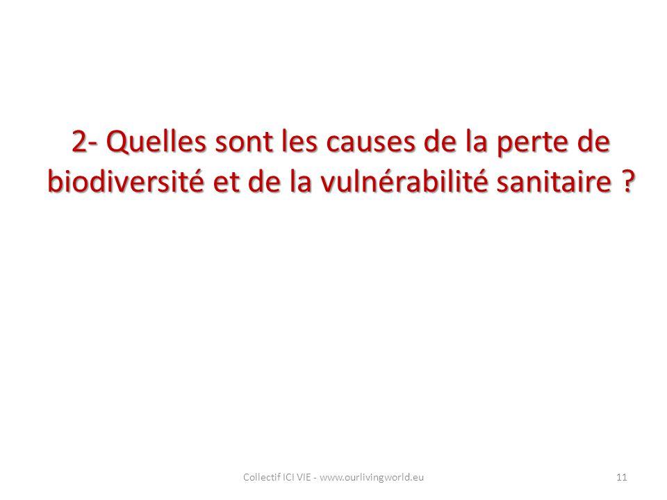 2- Quelles sont les causes de la perte de biodiversité et de la vulnérabilité sanitaire ? Collectif ICI VIE - www.ourlivingworld.eu11