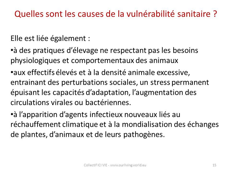 Quelles sont les causes de la vulnérabilité sanitaire ? Elle est liée également : à des pratiques d'élevage ne respectant pas les besoins physiologiqu