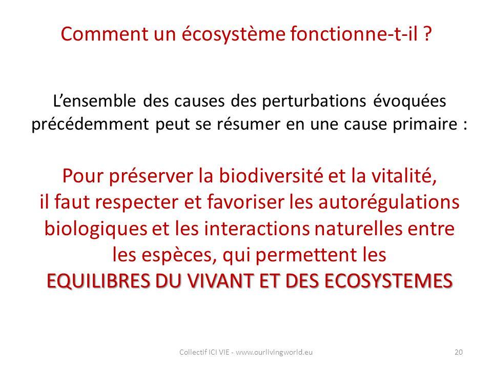 Comment un écosystème fonctionne-t-il ? L'ensemble des causes des perturbations évoquées précédemment peut se résumer en une cause primaire : Pour pré