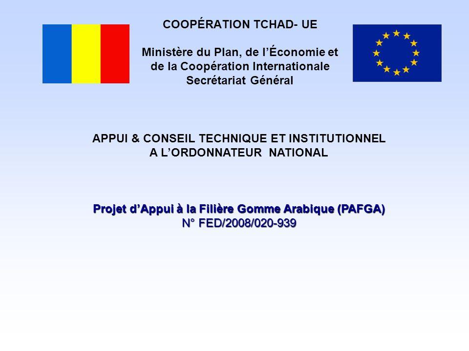 COOPÉRATION TCHAD- UE Ministère du Plan, de l'Économie et de la Coopération Internationale Secrétariat Général APPUI & CONSEIL TECHNIQUE ET INSTITUTIO