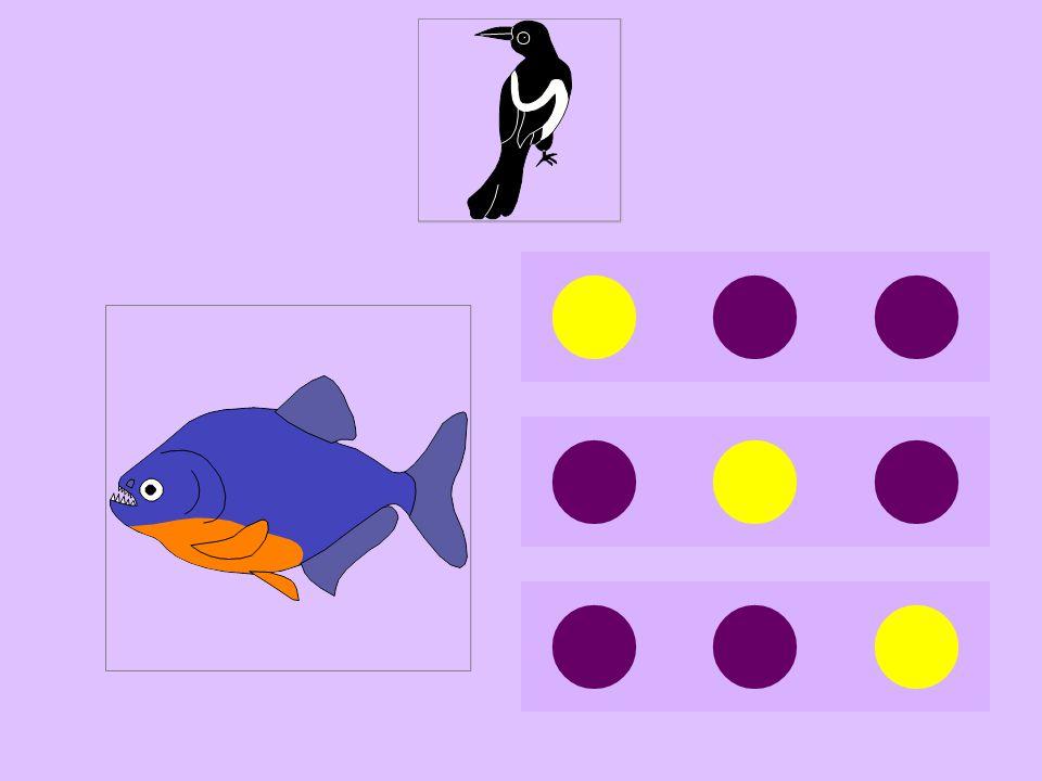 pi-piranha
