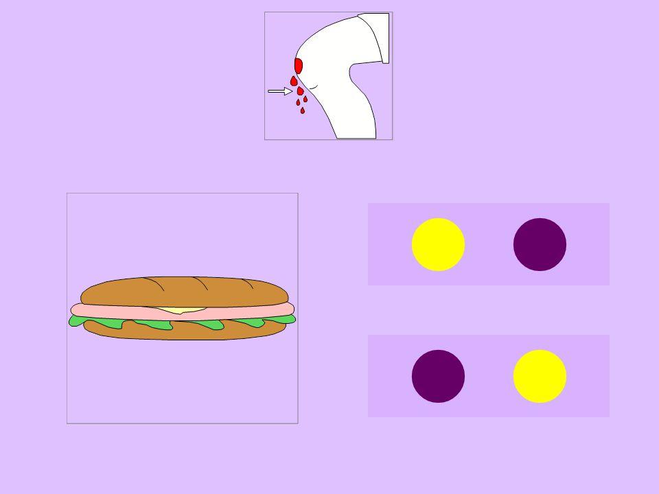 san-sandwich
