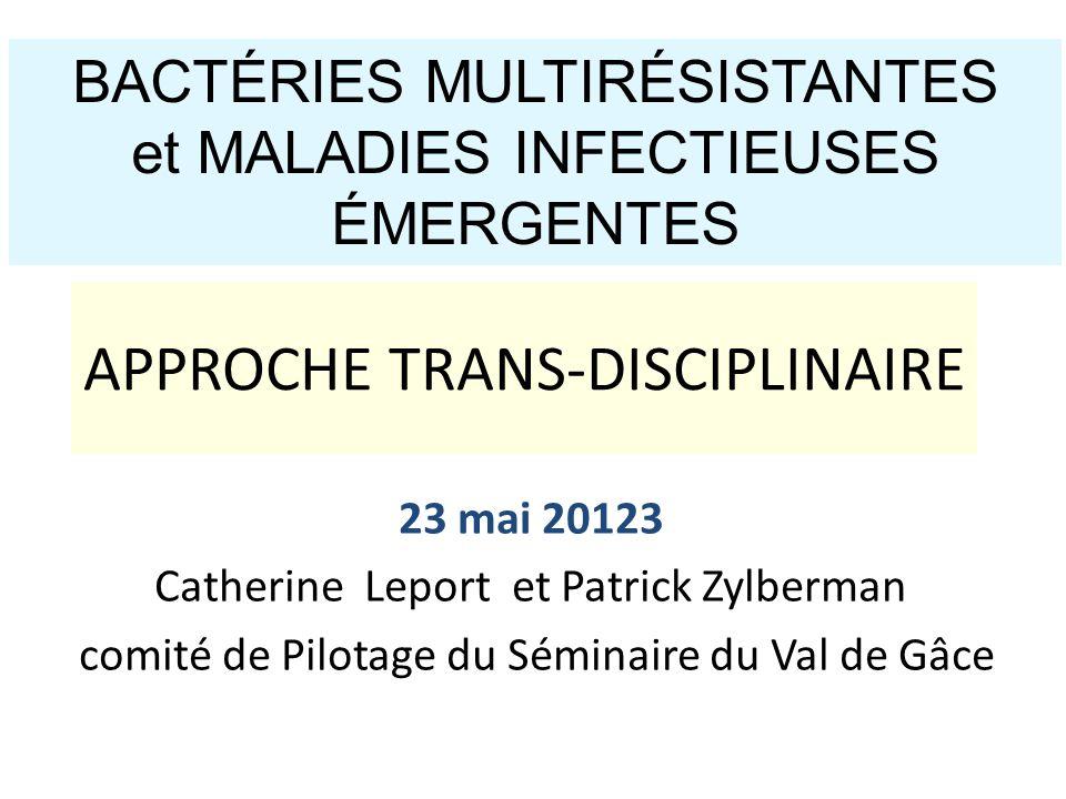 23 mai 20123 Catherine Leport et Patrick Zylberman comité de Pilotage du Séminaire du Val de Gâce BACTÉRIES MULTIRÉSISTANTES et MALADIES INFECTIEUSES