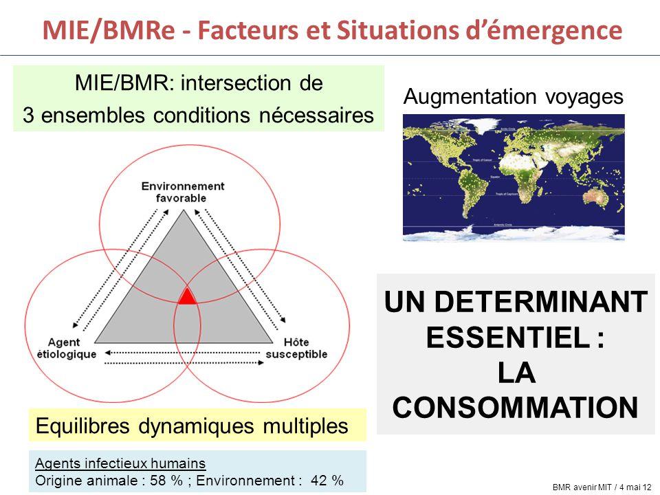 MIE/BMRe - Facteurs et Situations d'émergence MIE/BMR: intersection de 3 ensembles conditions nécessaires Equilibres dynamiques multiples Agents infec