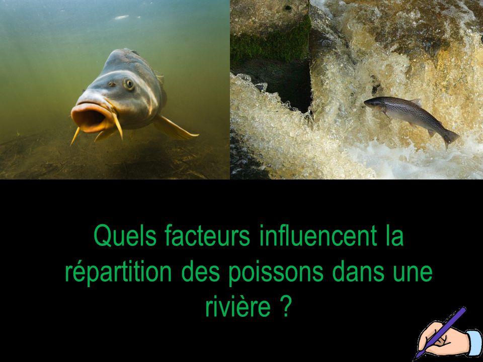 Pourquoi ne trouve-t-on pas les mêmes poissons de l'amont vers l'aval de la rivière ?