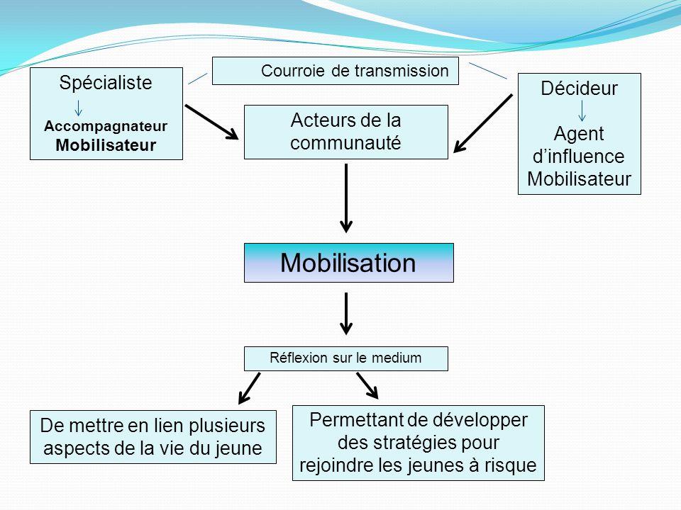 Spécialiste Accompagnateur Mobilisateur Acteurs de la communauté Décideur Agent d'influence Mobilisateur Mobilisation Réflexion sur le medium De mettr