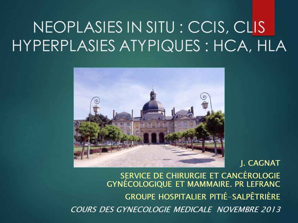 NEOPLASIES IN SITU 15-18% des cancers du sein  Pathologies non invasives  2 entités à part  CCIS = cancer  CLIS = FDR de cancer  Recommandations de l'INCA 2009  Actualisation prévue pour 2014